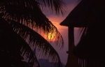 Highlight for Album: Cancun