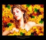 Magick of Autumn
