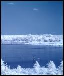 Lake Lavon #2