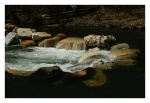 Trout Falls