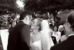 Highlight for Album: Thomas and Shanti's Wedding