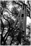 March 27 '03 - Restland Mem.